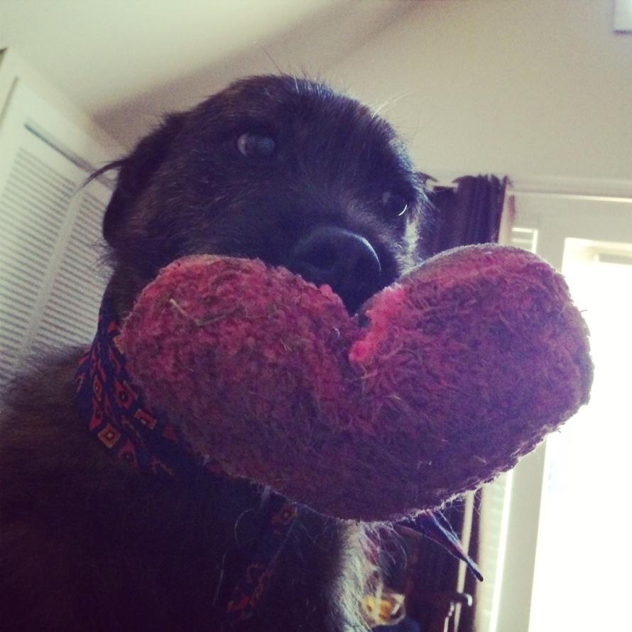 I lurf you...