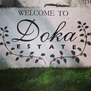 Coffee tour at the Doka Estate
