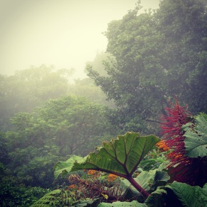 The mist covers the view at Volcan Poas