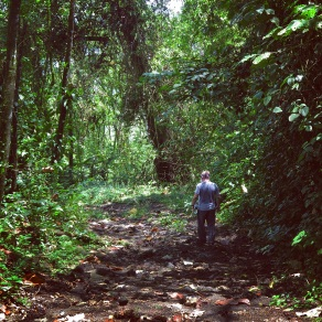 HIking the trail towards Volcan Arenal