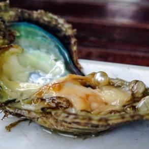 Pearl Farm, Ha Long Bay, Vietnam