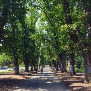 Cartlon Gardens, Melbourne, Australia